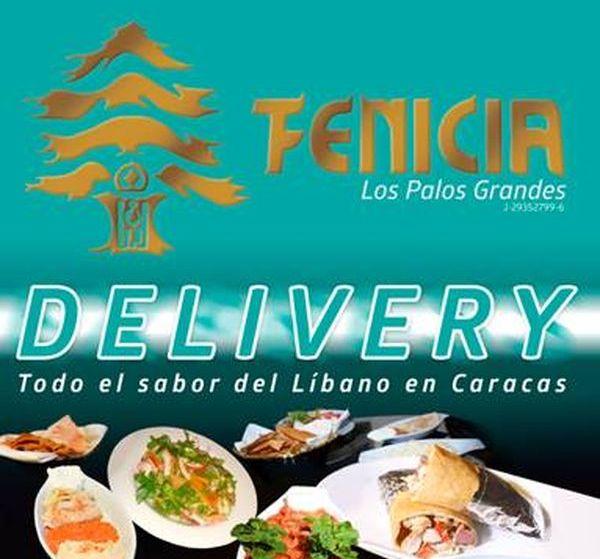 MSC Noticias - Fenicia-Delivery Gastronomía MS Plus Com