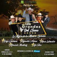 MSC Noticias - LOS-GRANDES-DEL-LLANO-200x200 DLB Group Com TV-Series