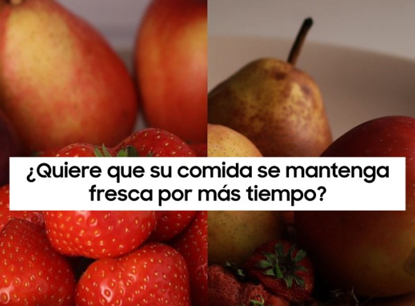 MSC Noticias - Keep-Your-Food-Fresher_main1_ES Hogar
